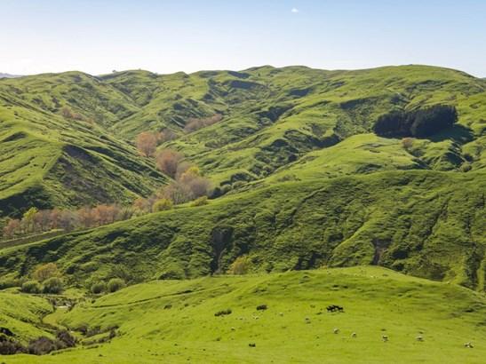 16482 Route 52, Ihuraua, Masterton - NZL (photo 1)