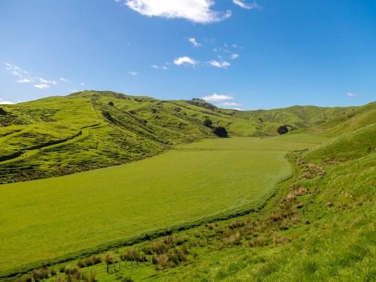 16482 Route 52, Ihuraua, Masterton - NZL (photo 3)