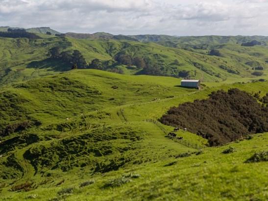 16482 Route 52, Ihuraua, Masterton - NZL (photo 4)