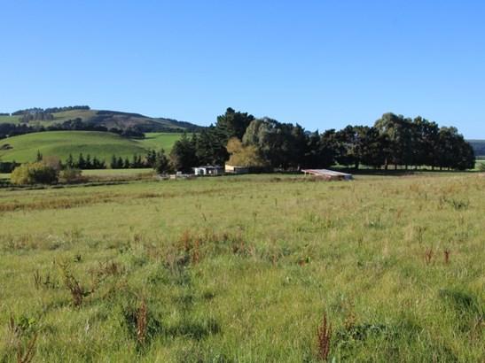 1355 Weston Ngapara Road, Windsor, Waitaki - NZL (photo 3)