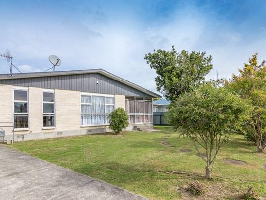 38 Geraldine Crescent, Cloverlea, Palmerston North - NZL (photo 1)