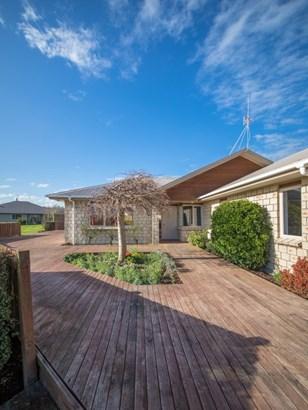 161 Pharazyn Street, Feilding - NZL (photo 2)