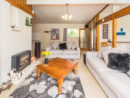 56 Great North Road, St Johns Hill, Whanganui - NZL (photo 3)