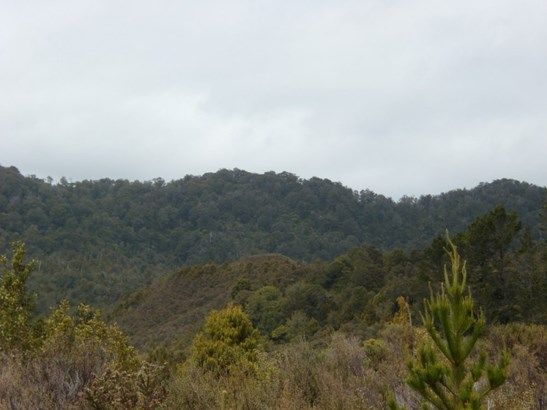 . State Highway 6, Charleston, Buller - NZL (photo 3)