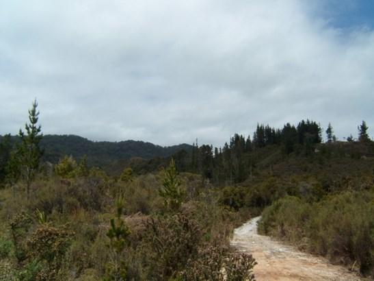 . State Highway 6, Charleston, Buller - NZL (photo 5)