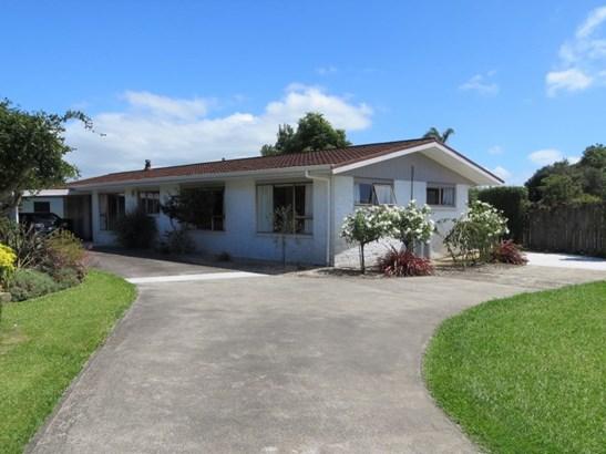 3 Mccarthy Street, Te Aroha, Matamata-piako - NZL (photo 1)