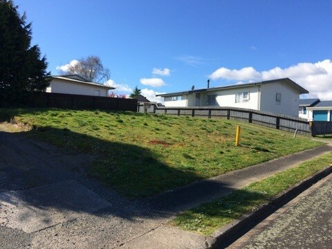 18a Bedford Place, Tokoroa, South Waikato - NZL (photo 2)