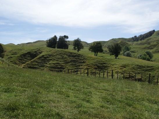 106 Waikaka Road, Matiere, Ruapehu - NZL (photo 3)