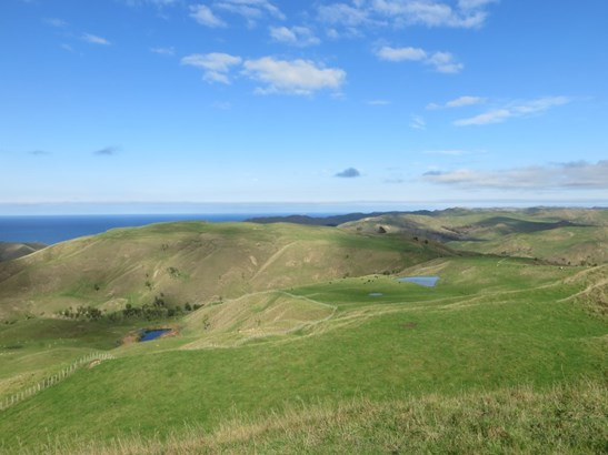 3340 Pourerere Road, Central Hawkes Bay - NZL (photo 1)