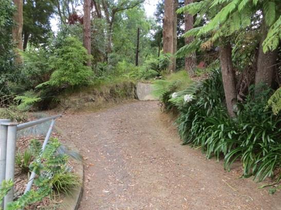 55 Gilchrist Street, Te Aroha, Matamata-piako - NZL (photo 2)
