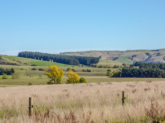 - Millars Road, Carterton - NZL (photo 4)
