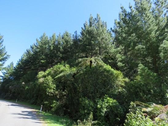 187 Darkies Terrace Road, Charleston, Buller - NZL (photo 5)