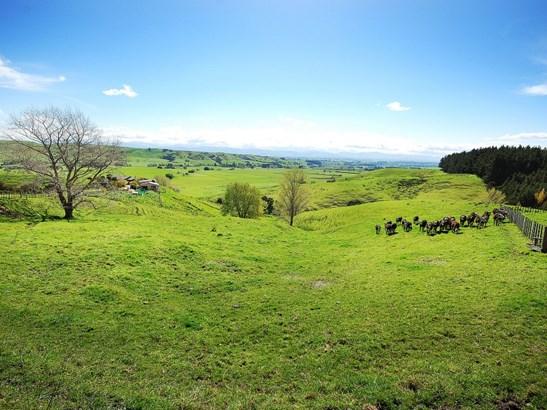 - Gladstone Braes, Gladstone, Carterton - NZL (photo 3)