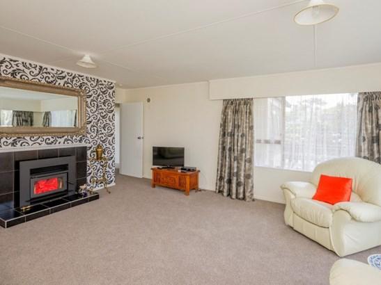 11 Matipo Street, Levin, Horowhenua - NZL (photo 3)