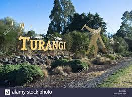 33 Ngahana Place, Turangi, Taupo - NZL (photo 4)