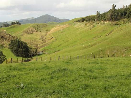 1063 Ngapaeruru Road, Dannevirke, Tararua - NZL (photo 5)