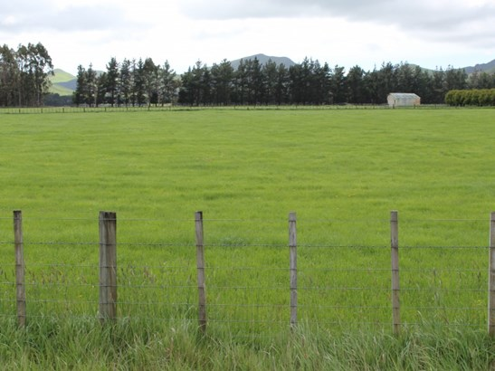 - Takapau Ormondville Road, Dannevirke, Tararua - NZL (photo 1)