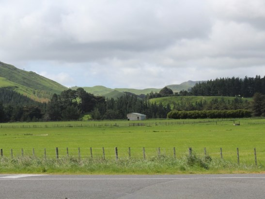 - Takapau Ormondville Road, Dannevirke, Tararua - NZL (photo 2)