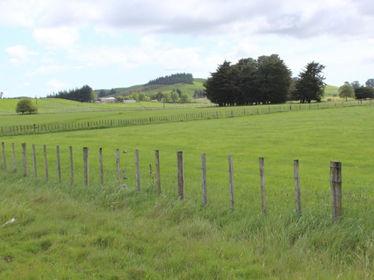 - Takapau Ormondville Road, Dannevirke, Tararua - NZL (photo 3)