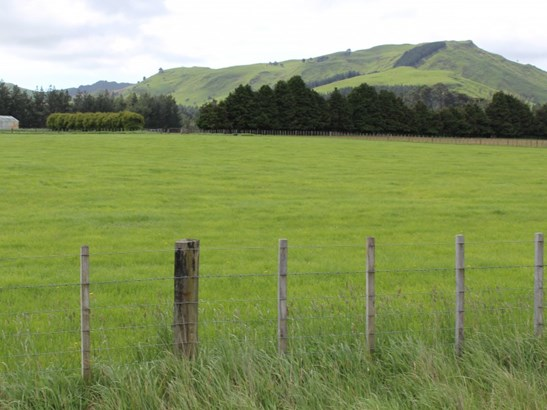 - Takapau Ormondville Road, Dannevirke, Tararua - NZL (photo 5)