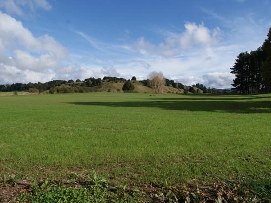 . Te Rena Road, Taumarunui, Ruapehu - NZL (photo 1)