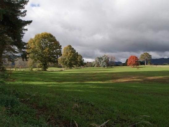 . Te Rena Road, Taumarunui, Ruapehu - NZL (photo 3)