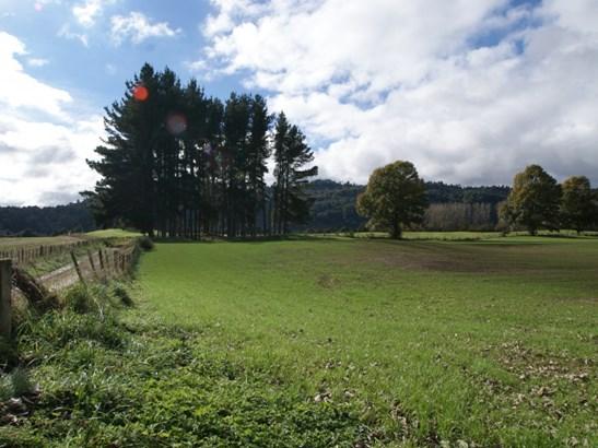 . Te Rena Road, Taumarunui, Ruapehu - NZL (photo 4)