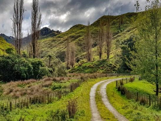 - Waitotara Valley Road, Waverley, South Taranaki - NZL (photo 4)