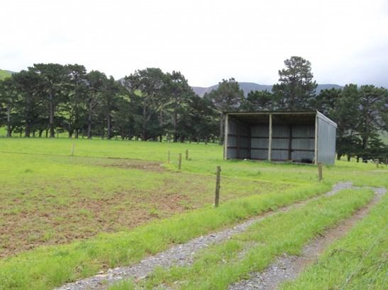 - Tamaki West Road , Dannevirke, Tararua - NZL (photo 4)