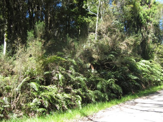 Lot 9 Clifton Road, Kaiata, Grey - NZL (photo 2)