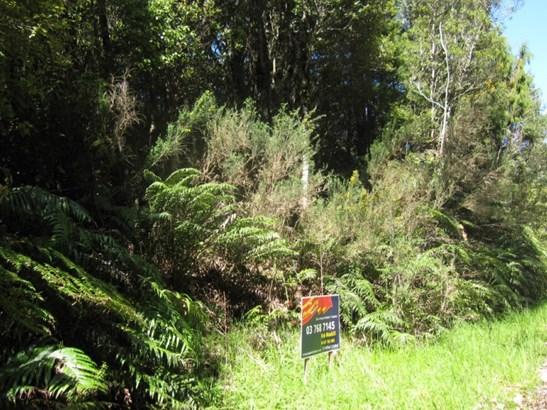 Lot 9 Clifton Road, Kaiata, Grey - NZL (photo 3)