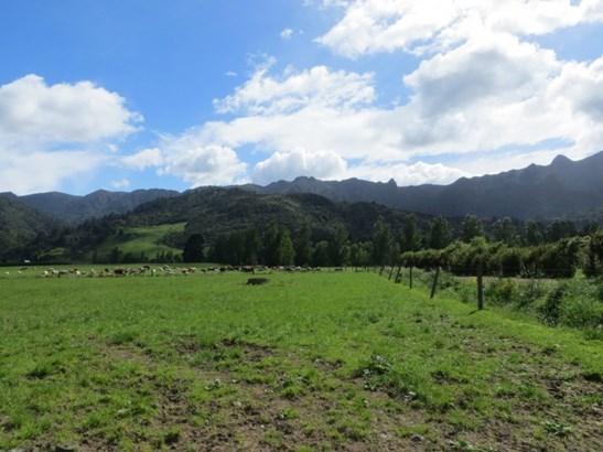 43 Te Aroha Gordon Road, Te Aroha, Matamata-piako - NZL (photo 3)