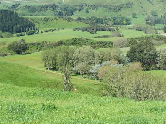 2732 Kimbolton Road, Feilding - NZL (photo 3)