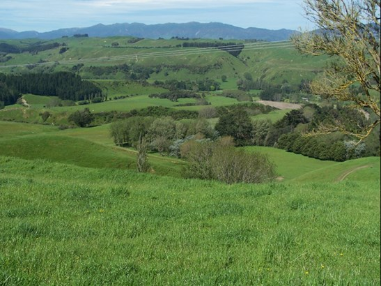 2732 Kimbolton Road, Feilding - NZL (photo 4)