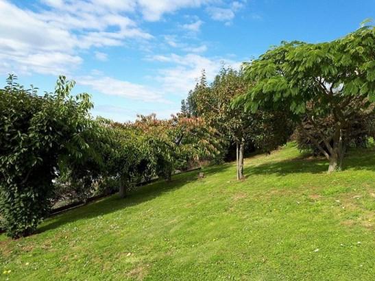 4 Largo Street, Oamaru, Waitaki - NZL (photo 2)