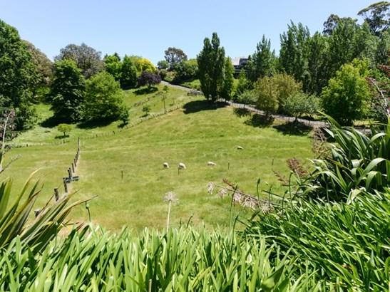 146 Poraiti Road, Poraiti, Napier - NZL (photo 4)