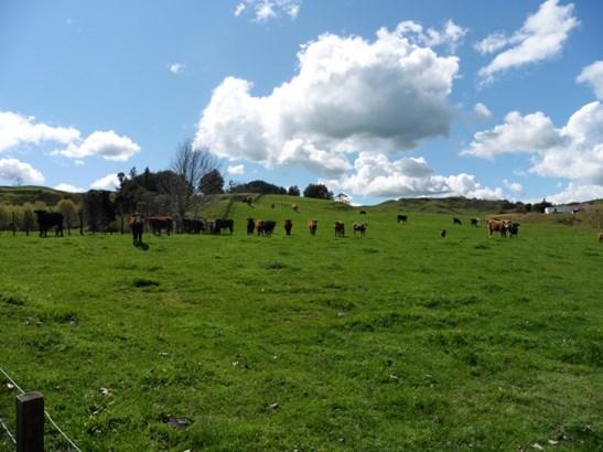 370 State Highway 3, Te Kuiti, Waitomo District - NZL (photo 1)