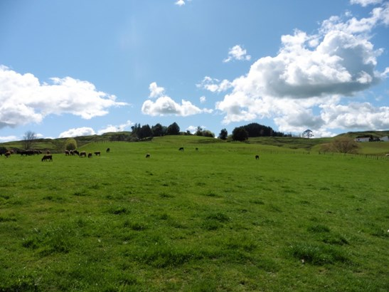 370 State Highway 3, Te Kuiti, Waitomo District - NZL (photo 5)