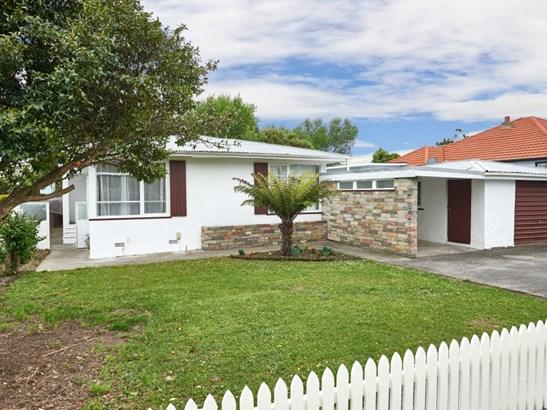 65 Mcgregor Street, Milson, Palmerston North - NZL (photo 2)