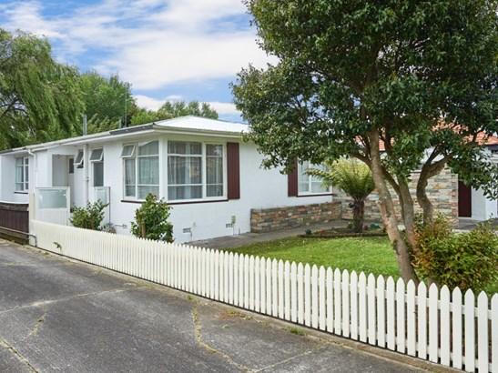 65 Mcgregor Street, Milson, Palmerston North - NZL (photo 3)
