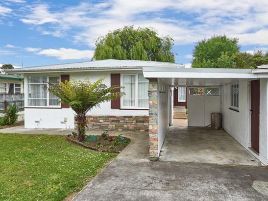 65 Mcgregor Street, Milson, Palmerston North - NZL (photo 4)