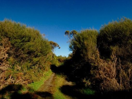 Lot 1 South Terrace Road, Karamea, Buller - NZL (photo 5)