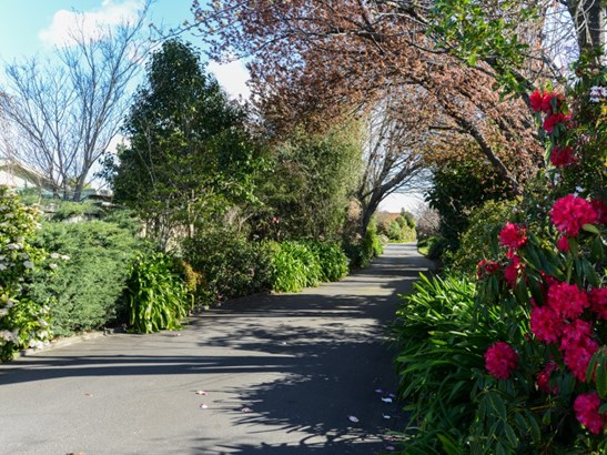806b Williams Street, Mahora, Hastings - NZL (photo 2)