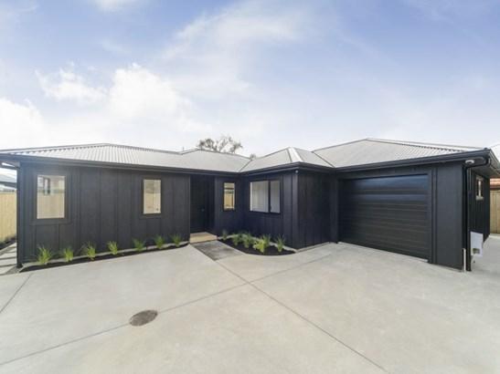 25b Hereford Street, Central, Palmerston North - NZL (photo 1)