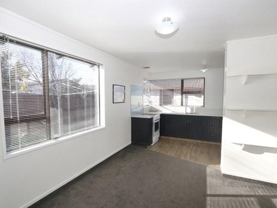 3/257 Cameron Street, Hampstead, Ashburton - NZL (photo 3)