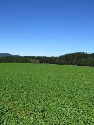 6261 State Highway 1, Upper Atiamuri, South Waikato - NZL (photo 2)