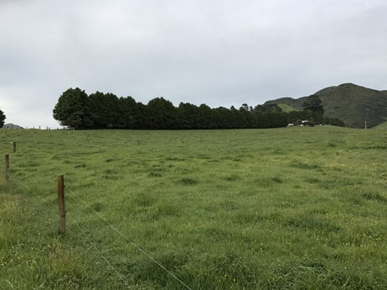 631 Ngamoko Road, Norsewood, Tararua - NZL (photo 4)