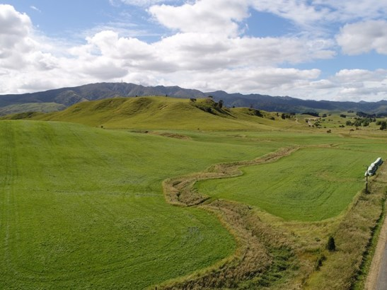 - Pinfold Road, Papatawa, Woodville - NZL (photo 1)