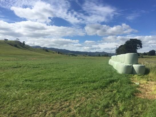 - Pinfold Road, Papatawa, Woodville - NZL (photo 2)