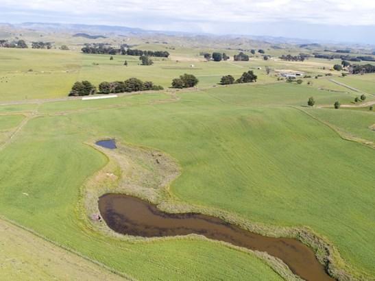 - Pinfold Road, Papatawa, Woodville - NZL (photo 4)